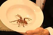 Eating a Live Tarantula