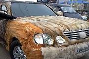 Furry lexus