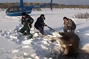 Pilots rescue a moose