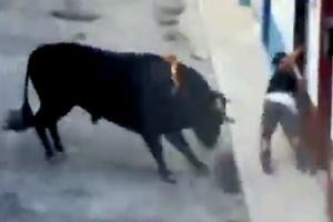 Brutally Gored To Death By Bull