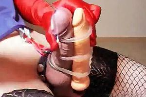 Cock Sounded And Vibrated