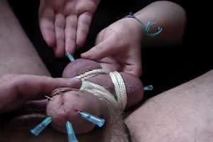 Genital Pincushion