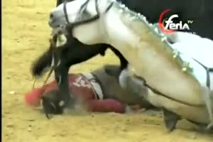 Female Matador Viciously Mauled By Bull