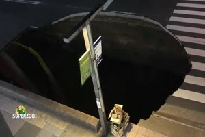 Huge Sinkhole Swallows Japanese Street