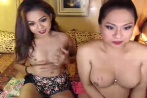 Two Horny Shemale Having Anal Sex