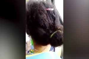 Hair Crawling With Lice