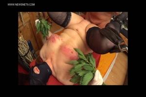 Slave Nettle Tortured